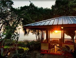 Holualoa Inn Kona Big Island Of Hawaii Bed And